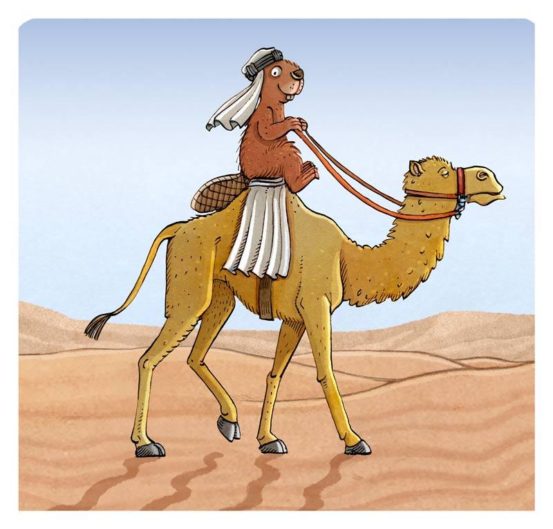 kamelbiber